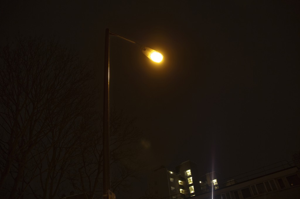 A photograph taken at night looking up at a large expanse of dark sky, at the centre is the warm, glowing light of a lamp-post. In the distance the faint silhouette of the bare branches of a tree is visible and a few squares of green, yellow light emanating from a distant block of flats. This is a portrait of a much loved light.