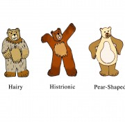 How Would You Classify Bears