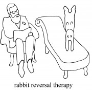 rabbitreversetherapy copy