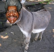 Don King Donkey