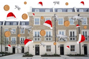 its raining biscuits cats and christmas hats - Alice Dutfield