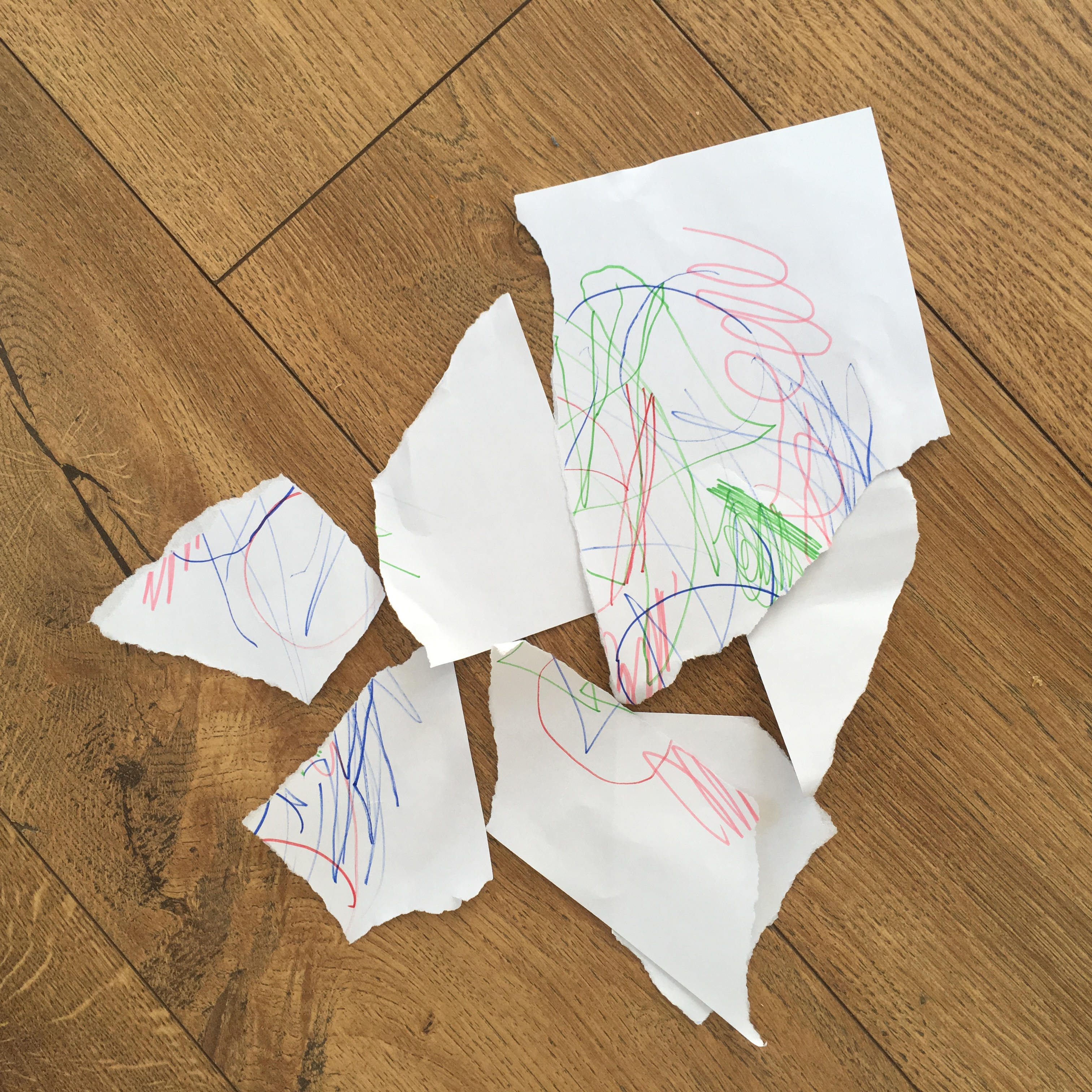 A photo of an A4 piece of paper with a child's drawing that has been ripped into pieces.