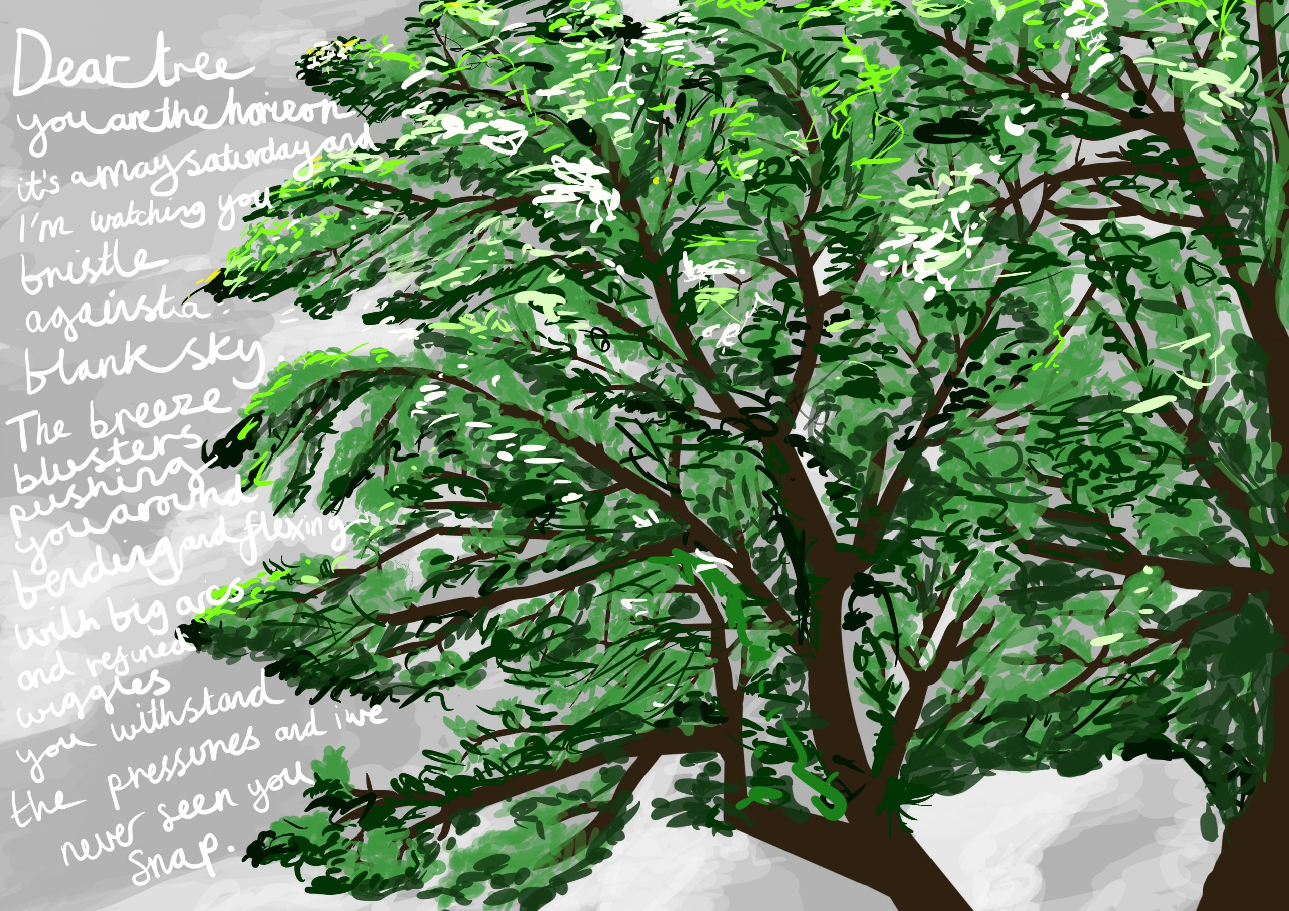 Image shows a digital drawing by Touretteshero of one of the sycamore trees she can see from her bedroom window. The sycamore is a lush early summer green on a stormy afternoon. The sky is grey, blustery and changeable with the following accompanying text: 'Dear Tree, you are the horizon. It's a May Saturday and I'm watching you bristle against a blank sky. The breeze blusters, pushing you around. Bending and flexing with big arcs and refined wiggles you withstand the pressures, and I've never seen you snap.'