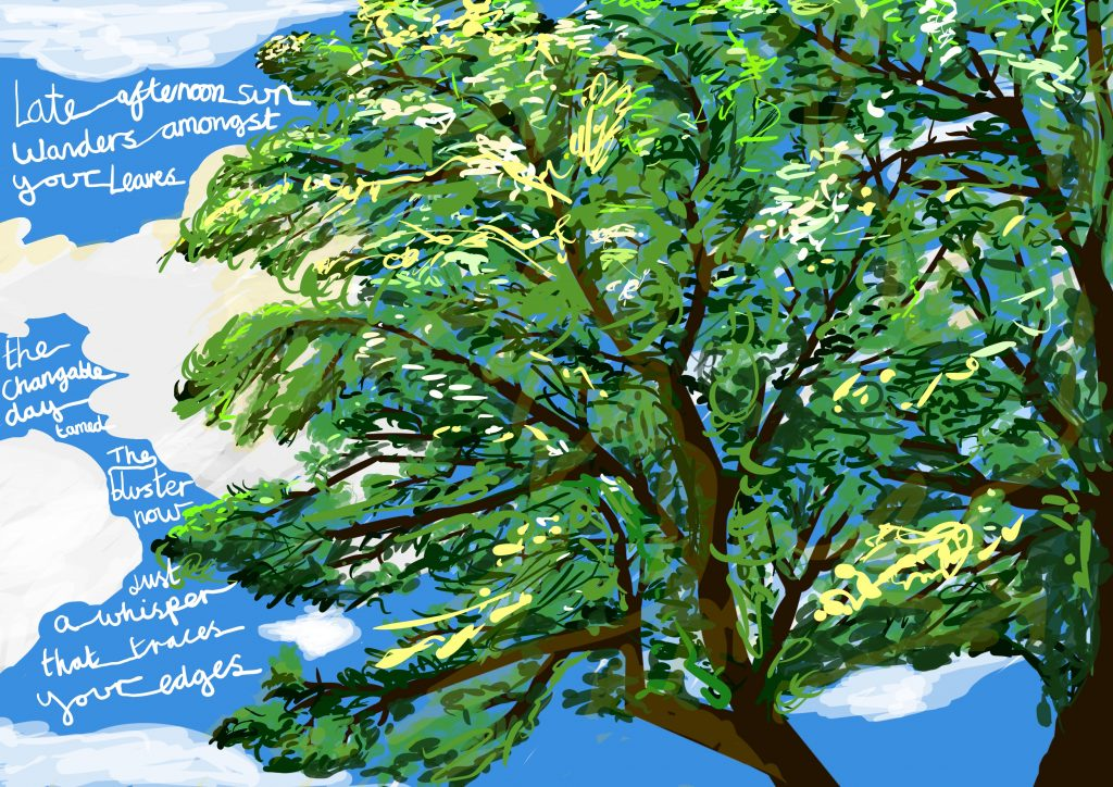 Image shows a digital drawing by Touretteshero of one of the sycamore trees she can see from her bedroom window. The sycamore tree is a lush early summer green and the sky is bright blue with a few fluffy white clouds. Yellow sunlight is visible across the tree. Cursive text reads: Late-afternoon sun wanders amongst your leaves. The changeable day's tamed. The bluster's now just a whisper that traces your edges.