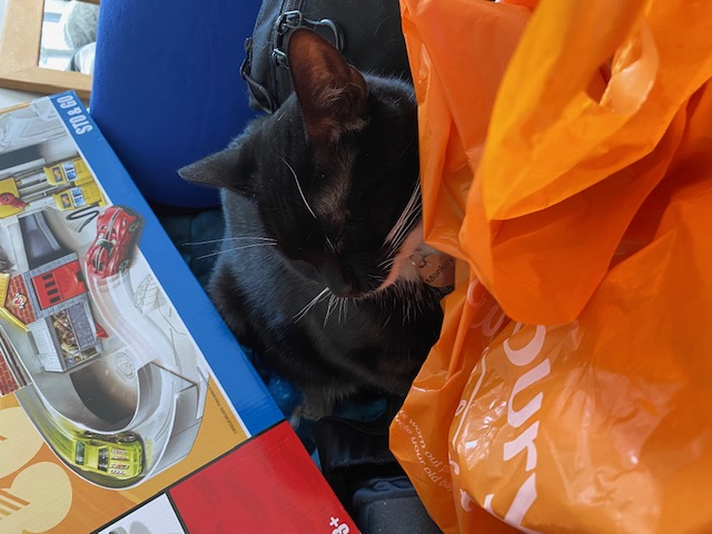 Image shows a photograph of Monkey the cat nestled amongst a hot wheels box, blue weighted blanket and orange Sainsbury's shopping bag. Monkey is a black and white 2 year old cat belonging to Touretteshero's friend Chopin.